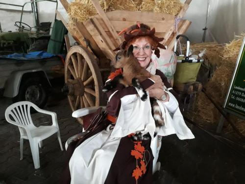 Maislabyrinth 2018 in der Scheune mit einer Ziege